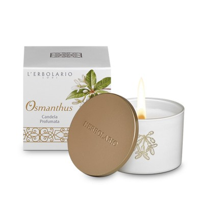 Osmanthus Perfumed Candle Limited Edition