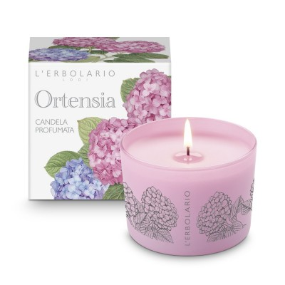 Hydrangea Perfumed Candle