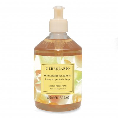 Citrus Hand and Body Cleanser