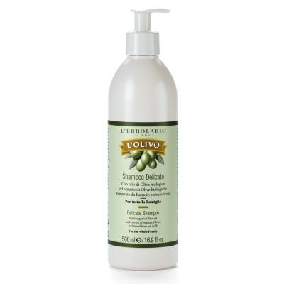 Olive delicate Shampoo