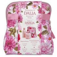 Shades of Dahlia Petal Beauty Bag