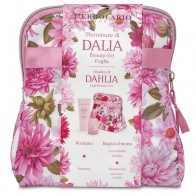 Shades of Dahlia Leaf Beauty Bag