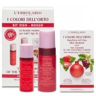 The Vegetable Garden Red Face Kit
