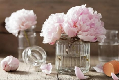 When fragrance… is a part of the home!